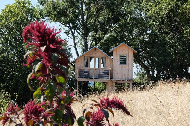 Cabane dans la nature