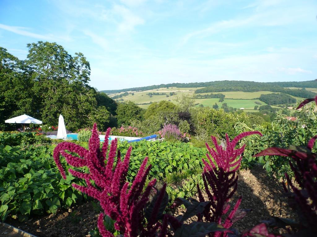 D couvrez un environnement riche au sein de la bourgogne for Piscine fougeres